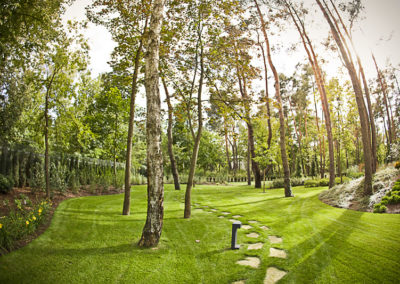 Ogrod wMiedzyleciu 1