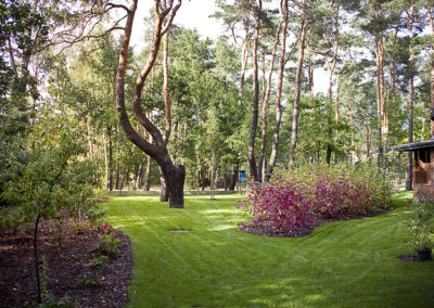 Ogrod wMiedzyleciu 22