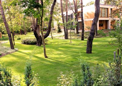Ogrod wMiedzyleciu 28