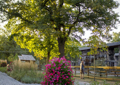 Park Zdrojowy wKonstancinie 8