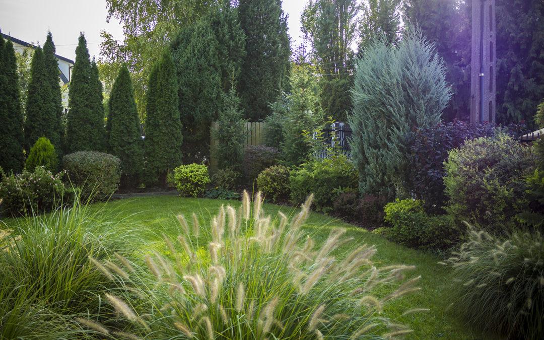 Ogród wBlizne Jasińskiego
